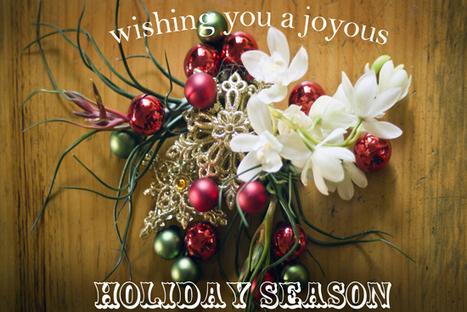 Wishing You A Joyous Holiday Season | Grown Green Gardens | Scoop.it