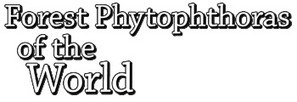 Welcome to Forest Phytophthoras of the World | Forest Phytophthoras of the World | Diagnostic activities for plant pests | Scoop.it