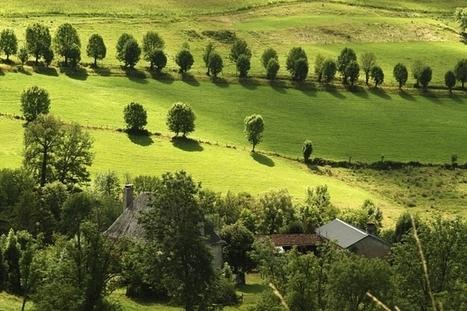 INRA - Agro-écologie, l'Inra au coeur de l'expertise   AGRONOMIE VEGETAL   Scoop.it