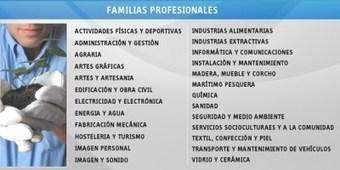 Certificados de Profesionalidad y Homologaciones | Talento Global | Scoop.it