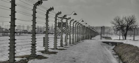 Holocauste: 55% des Allemands pensent qu'il faudrait «enfin tirer un trait sur le passé» | au CDI en allemand... | Scoop.it
