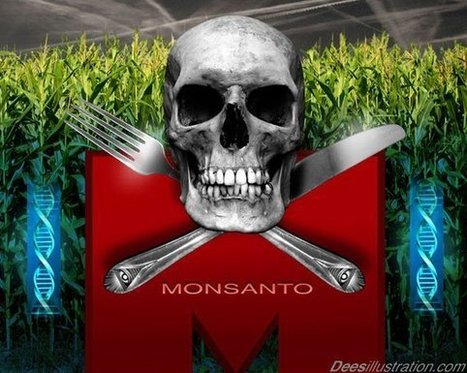 Leaked Documents Reveal US Diplomats Actually Work for Monsanto | Dominance Theory Groups:Tea Party, Ggolden Dawn, Muslim Brotherhood, Bilderburg Group, fascist-oriented, CCP | Scoop.it