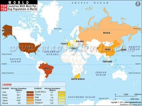 countries-by-pet-dog-population.jpg (800x600 pixels) | Cinófilia | Scoop.it