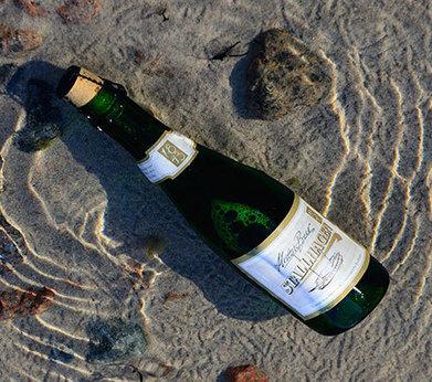 Riprodotta birra di 170 anni fa recuperata da un naufragio del 19 ... - greenMe.it | fox | Scoop.it