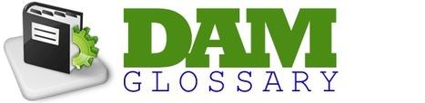 (EN) - Digital Asset Management Glossary | damglossary.org | Asset Management Engineering | Scoop.it