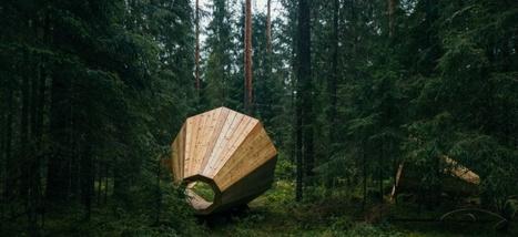 Des étudiants construisent un cornet acoustique géant pour écouter la forêt | The Blog's Revue by OlivierSC | Scoop.it
