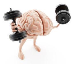 The Emotionally Intelligent Brain, Part 2 | Mom Psych | Scoop.it