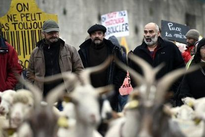 """Des centaines de paysans manifestent contre """"l'industrialisation de l'élevage""""   Faut pas pucer   Scoop.it"""