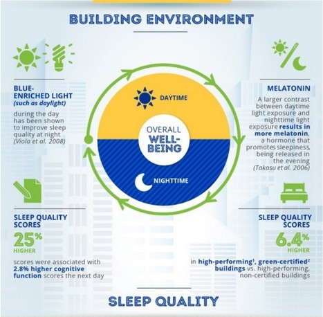 Harvard finds certified green buildings improve both thinking and sleep   Sustainable Living Through Technology and Nature   Scoop.it