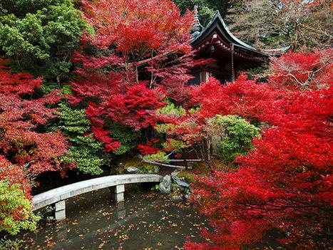 10 endroits pour profiter de l'automne et de ses couleurs   Idées Destinations   Scoop.it