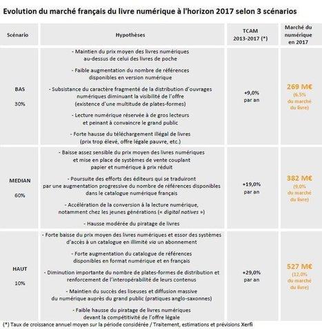 Livre numérique : un marché de 250millions d'euros en 2015 en France | L'édition numérique pour les pros | Scoop.it