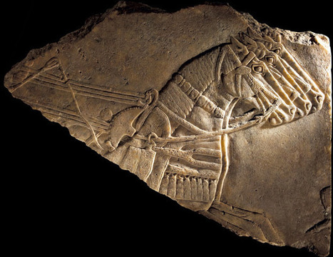 Exhibition: The horse: from Arabia to Royal Ascot, British Museum (24 May – 30 September 2012) | Archaeology Travel | Scoop.it