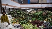 Sustainable approaches to reducing food waste in India - MIT News Office   Vertical farming   VertiFarm©   Scoop.it