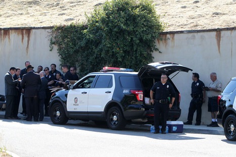 Standoff Between LAPD and Chris Brown Ends, Drugs and Guns Found | Criminal Justice in America | Scoop.it