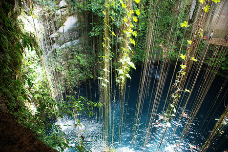 Head to the Yucatan Cenotes for Awesome SCUBA Diving - Book Your Dive | The Joy of Mexico | Scoop.it