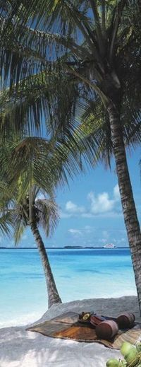 Andaman Honeymoon Packages   India Tour Packages   Scoop.it