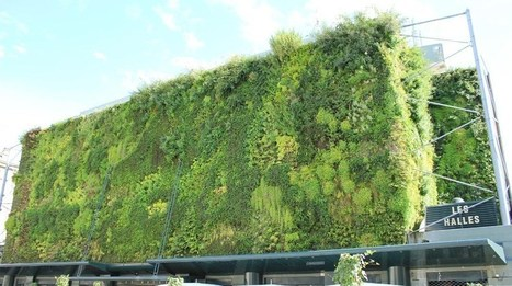 vertical green wall | green wall system,vertical planter | Scoop.it