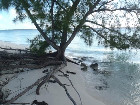 Grand voyage en voilier: Direction George Town Bahamas   Voyage en Catamaran, rien de plus simple.   Scoop.it