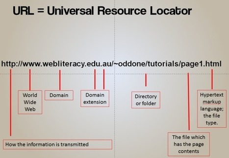 SCIS | Information and critical literacy on the web | 21st Century School Libraries | Scoop.it