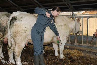 Le centre d'application de l'Ecole nationale vétérinaire d'Alfort craint pour son avenir | Au hasard | Scoop.it