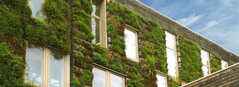 La biodiversité, nouvel enjeu du bâtiment durable | Conseil construction de maison | Scoop.it