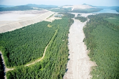 Mount Polley rating won't be released | Sustain Our Earth | Scoop.it