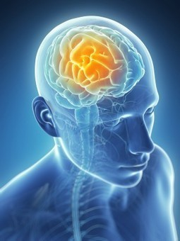 DETOXING FOR BRAIN HEALTH - NEW RESEARCH FINDINGS: CranioSacral Therapy Improves Glymphatic Cleansing of Brain Tissue - Be Well Buzz | Health-rights, | Scoop.it