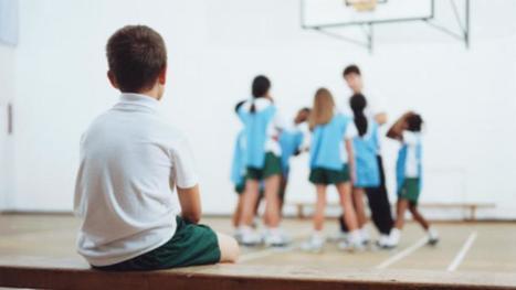 ¿Cómo incluir la diversidad y las diferencias en la escuela?   #TRIC para los de LETRAS   Scoop.it