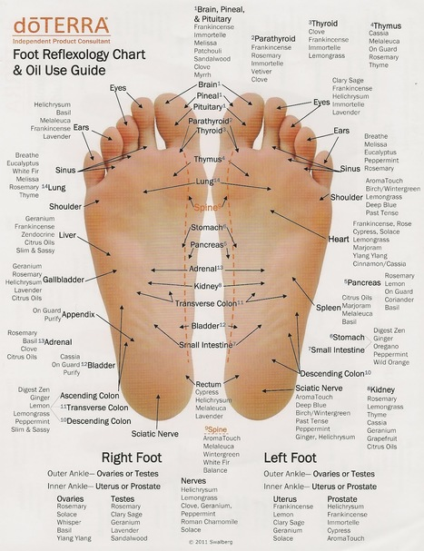 Foot Reflexology Chart & Oil Use Guide | I didn't know it was impossible.. and I did it :-) - No sabia que era imposible.. y lo hice :-) | Scoop.it