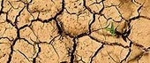 Greenversations » The Water Cycle Revisited: What's it Got to Do with Climate Change? | Sustainable Futures | Scoop.it