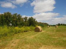 AGRI-ENVIRONNEMENT > Campagne de contractualisation NATURA 2000 pour les Mesures agricoles jusqu'au 15 juin 2016   Revue de presse Pays Médoc   Scoop.it