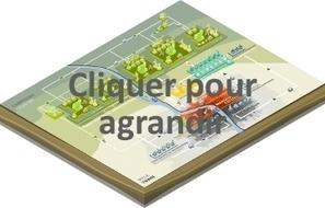 L'agriculture en ville : un projet urbain comme un autre | rngobagal@efficom-lille.com | Scoop.it