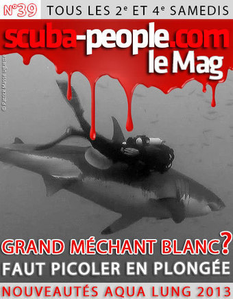 LE N°39 EST EN LIGNE | SCUBA PEOPLE | Scoop.it
