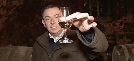 Voilà pourquoi le whisky français sera bientôt le meilleur au monde | Soft Power à la Française | Scoop.it
