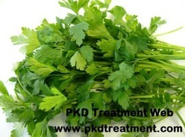 Can Kidney Failure Eat Parsley In Their Daily Diet - PKD Treatment Web | Healthy | Scoop.it