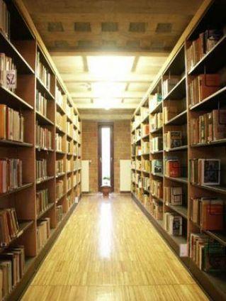 Structura Organizatorica | Biblioteci | Scoop.it