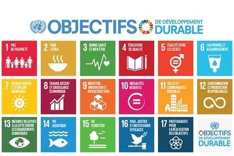 Développement durable : l'ONU lance une application mobile pour mobiliser les citoyens | Les coups de coeur de D'Dline 2020 | Scoop.it
