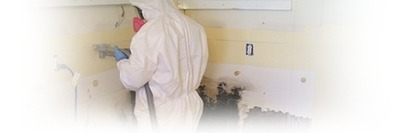 Professional Mold Removal - Kill Black Mold | Mold Removal | Scoop.it