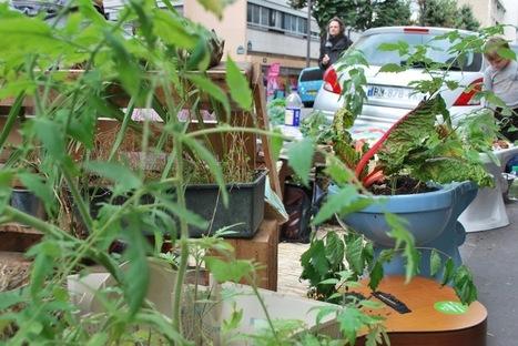 L'armée des plantes   Urbanisme   Scoop.it