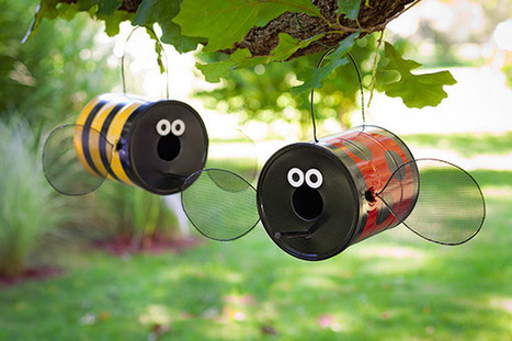 Buggy Birdfeeder - Lowe's Creative Ideas | Kids Going Green!! | Scoop.it