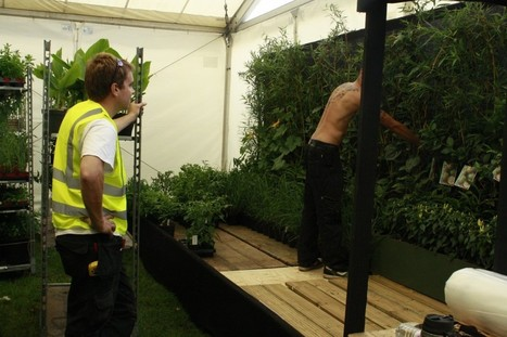 Final preparations for #RHS Hampton — The Intelligent Garden | ProspectNetworking  Businesses | Scoop.it