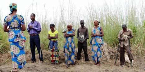 Congo: comment peut-on mourir de faim sur des terres aussi fertiles? | Afrique: développement durable et environnement | Scoop.it