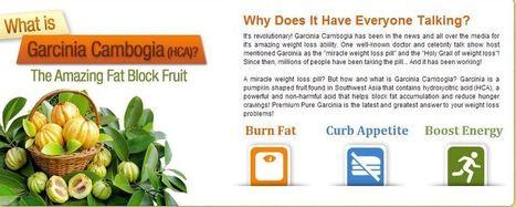 Premium Natural Garcinia Cambogia Review- Burn Away Your Fat Faster! | karissh marksrs | Scoop.it