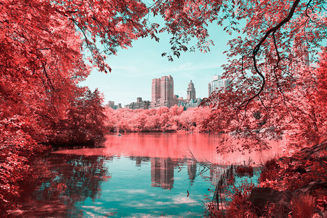 NYC's Central Park photographed in infrared by Paolo Pettigiani | D_sign | Scoop.it
