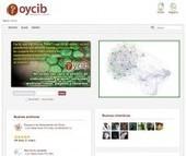 The #Elgg Community: #Oycib. Inteligencia Colectiva | #open #SNA #gephi | Public Datasets - Open Data - | Scoop.it