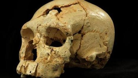 "Ancient skulls reveal ""mixed"" Neanderthal-like lineage 
