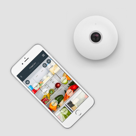 TheFridgeCam lets you spy on your milk, cheaply | Home Automation | Scoop.it