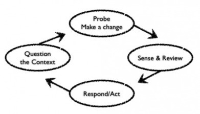 Learning by doing   Harold Jarche   Dave B's Collaboration in Organisations   Scoop.it