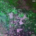 Alan Belward tracks changes to Earth's forests from space - EarthSky | Remote Sensing News | Scoop.it