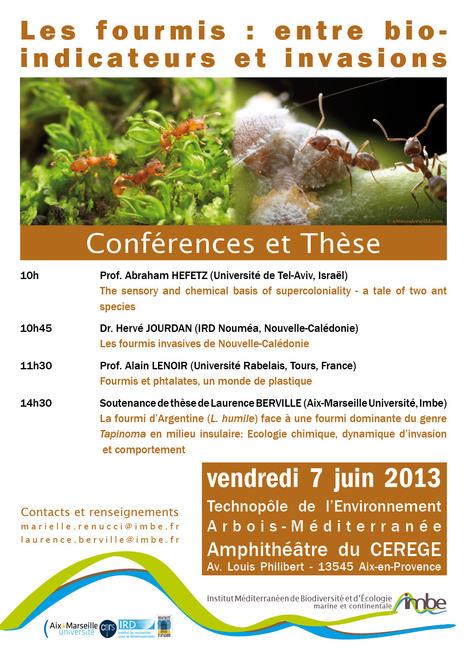 Les fourmis : entre bio-indicateurs et invasions   Fourmis   Scoop.it
